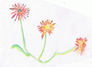 Hudley color sketch of flowers