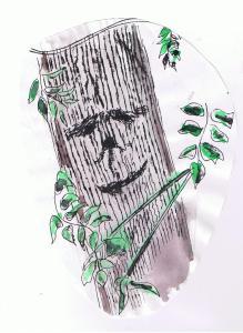ash tree 001
