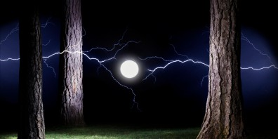 Glowing orb and Lightning in forest